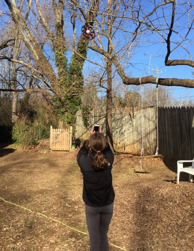 ... Calla is getting very good at flying her drone. She can make it cruise right up to you, spin and then go on, all the while videotaping and recording you. On the other hand, if the drone gets too close to a tree, this might happen. Cecelia photographs the drone hung up on a limb. What to do? Have me climb up on a step ladder and snag it.
